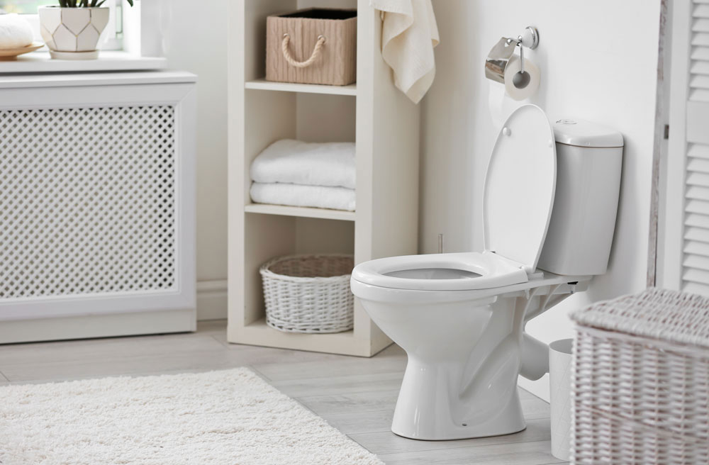 Scottsdale Toilet repair and installation